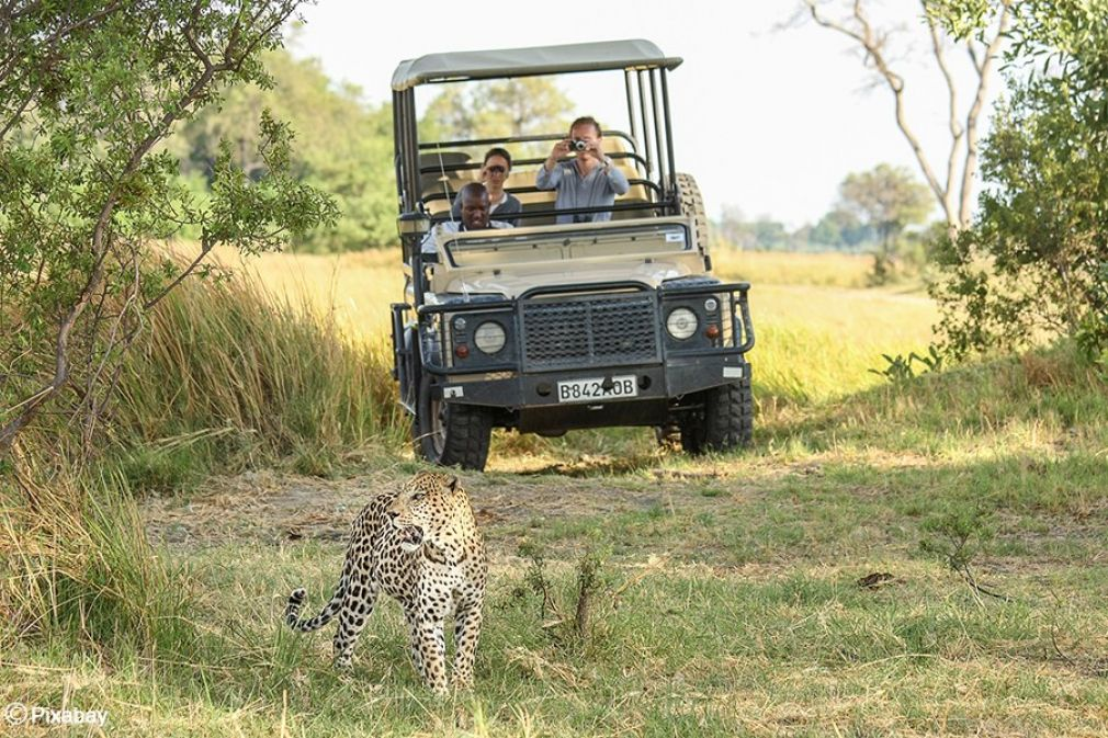 Botswana works to diversify economy to incorporate more tourism