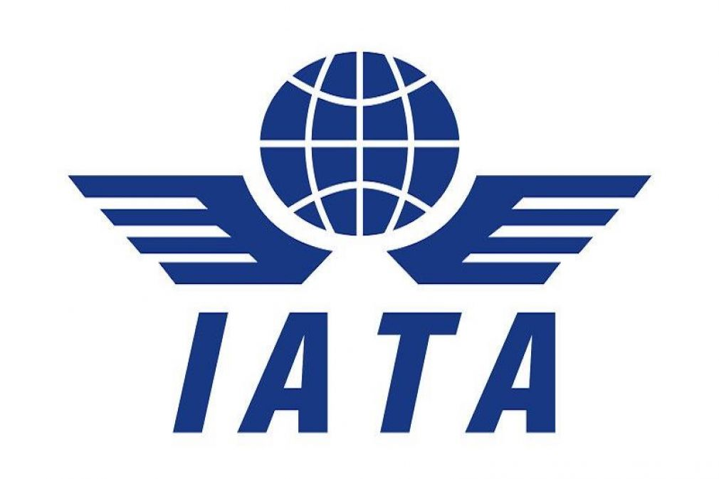 IATA: Passenger Growth, Economic Boost Incentives for Investing in Aviation